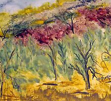 The Olive Grove, Strath Creek, Vic Australia by Margaret Morgan (Watkins)