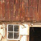 Old barn in Bulgaria by Diana  Kaiani