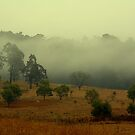 Putty Valle, Morning Mists by SylanPhotos