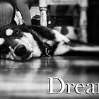 Dream. by Kingstonshots