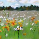 Camomile field. by Evgenia Attia