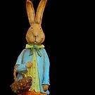 Happy rabbit..... by DaveHrusecky