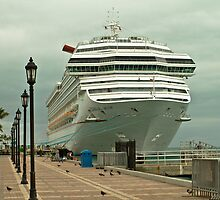 Cruise ship by Thad Zajdowicz