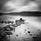 Scotland: Loch Lomond by Nina Papiorek