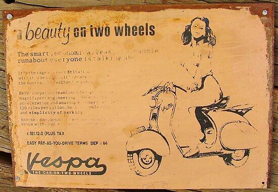 Beauty On Two Wheels by Liz Worth