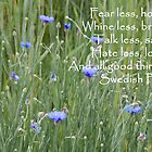 Bachelor's Buttons Quotation by cchandler