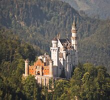 neuschwanstein by shannon browning