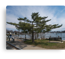 Overlooking Wickford Harbor Canvas Print