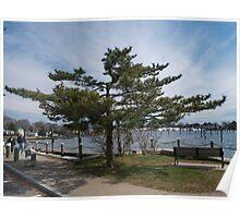 Overlooking Wickford Harbor Poster