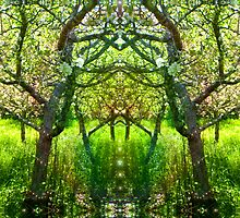 Fairy Arbor by Nansee Greenwitch