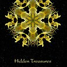 Hidden Treasures II by Karen Casey-Smith