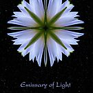 Emissary of Light Mandala II by Karen Casey-Smith