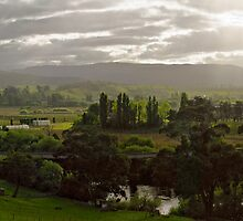 Macquarie Plains 4 shot Pano, Tasmania by Odille Esmonde-Morgan