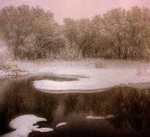 Winterset by Bob Larson