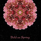 Bold as Spring II by Karen Casey-Smith