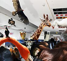 Wild Airplane Ride by Doty