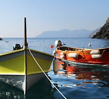 Manarola Boats by Emma Holmes