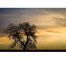Night to Day Photographic Print