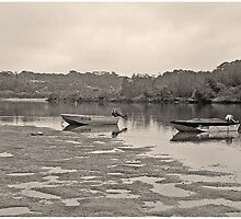 Low Tide - Nambucca River by George Petrovsky
