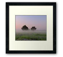 Morning Mist Above the Bluebonnets - Denison Dam, Texas, USA Framed Print