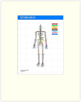 Underskin new version by Sam Loman