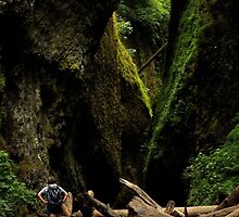 Oneonta Gorge ~ Part Three by artisandelimage