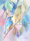 Eastern Bluebird by arline wagner