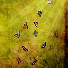 Dancing Butterflies by Lois  Bryan