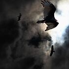 The Vultures Have Gathered In My Dreams . Version 2 . Golden by Wingsdomain Art and Photography