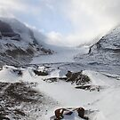 Athabasca Glacier, Jasper, Canada by Carole-Anne