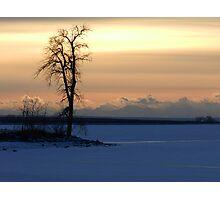 Frozen Silhouette Photographic Print