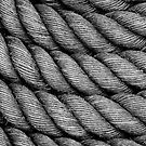 Black Rope: detail by physiognomic