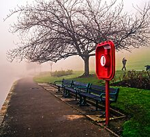 Crookes Valley Park by Jose Vazquez