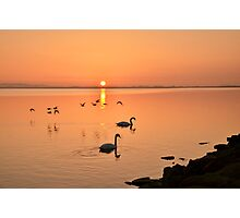 Sunrise Fly by  Photographic Print