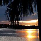 Florida Sunset by FathersWorld