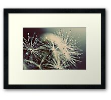 reaching the moon Framed Print