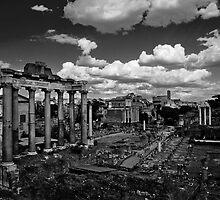 Roman Forum by Gianluca Laurentini