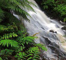 Cora Lynn Falls. Heart of the cumberland valley. Camberville  by Donovan wilson