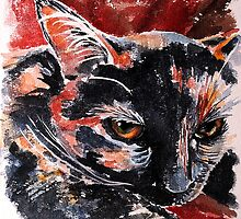 Winston, featured in Art Universe, Cat's Pajamas by FDugourdCaput