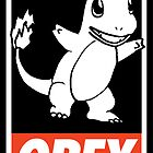 OBEY Charmander by Royal Bros Art