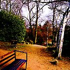 Beauty of the park by vampireegirll