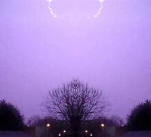 March 19 & 20 2012 Lightning Art 8 by dge357