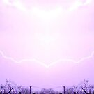 March 19 & 20 2012 Lightning Art 14 by dge357