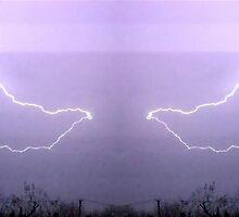March 19 & 20 2012 Lightning Art 19 by dge357
