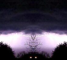 March 19 & 20 2012 Lightning Art 58 by dge357