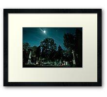 Fangelsbachfriedhof Framed Print