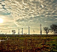 Windmills in Backlight by wulfman65