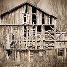 Dilapidated Ohio Barn  by Marcia Rubin