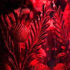 Cut Red Glass vase, detail. by Billlee
