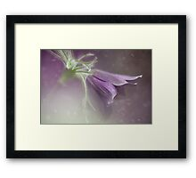 A dream of Spring Framed Print